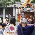 Photos: 祭りの日/小樽寸景/団扇