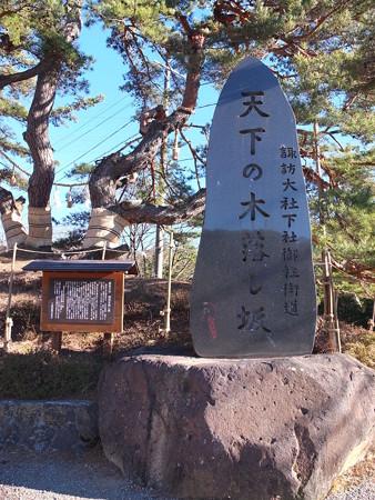 御柱祭2016 天下の木落し坂の碑