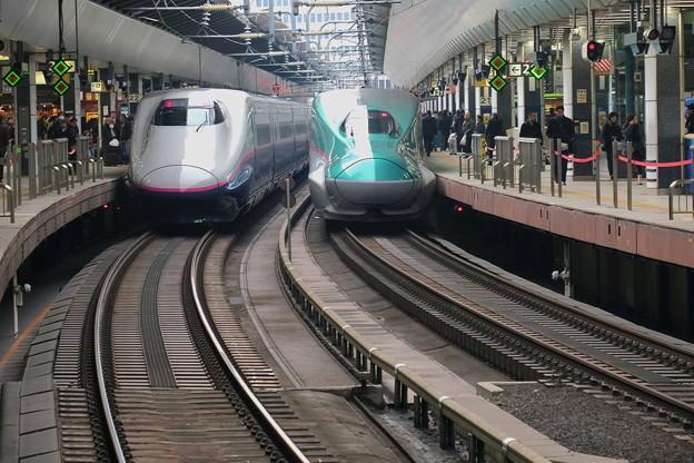 二両の新幹線jpg