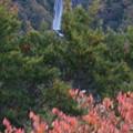 滝の見える場所