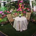 写真: 花園の中で