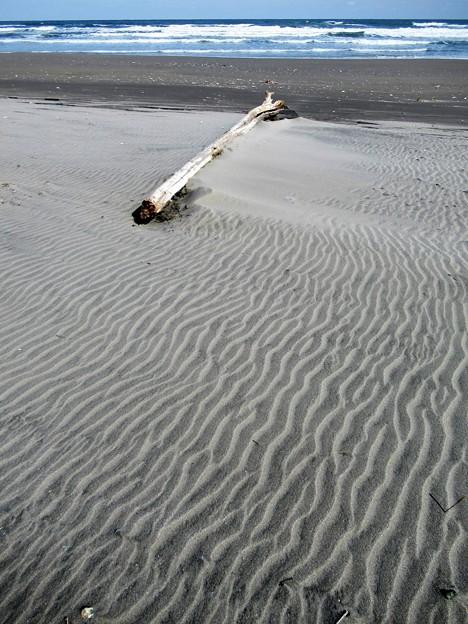 海辺の風紋