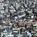 Photos: 下町の家家