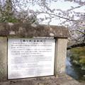 写真: 鶴ヶ城(若松城)