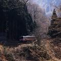 写真: 大糸線非電化地区