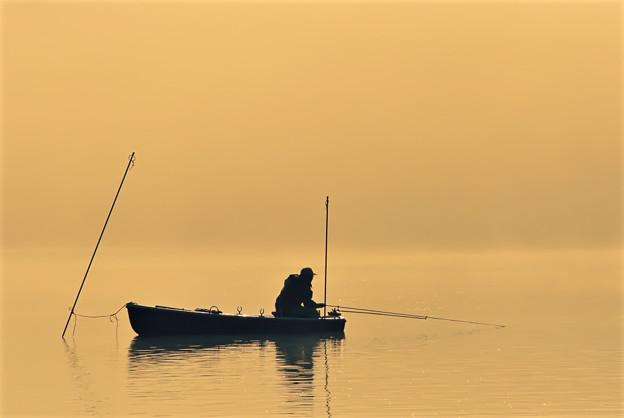 写真: 静かに待つ