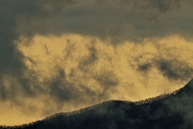 写真: 雨上がりの尾根