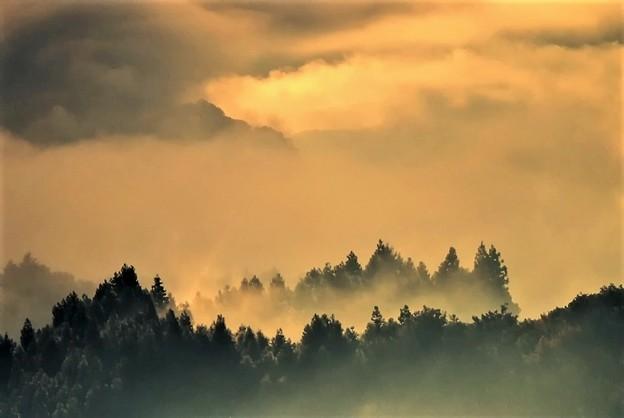 写真: 朝の光景