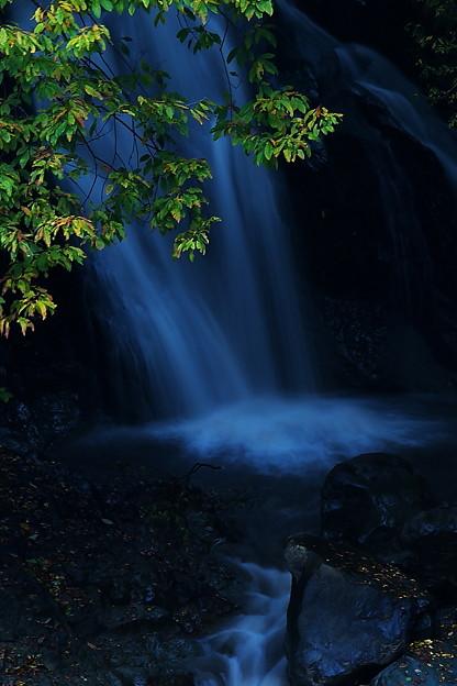 写真: 秋の小滝