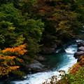 Photos: 秋の渓流