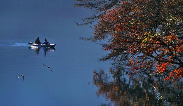 写真: のどかな秋