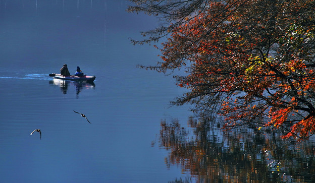 Photos: のどかな秋