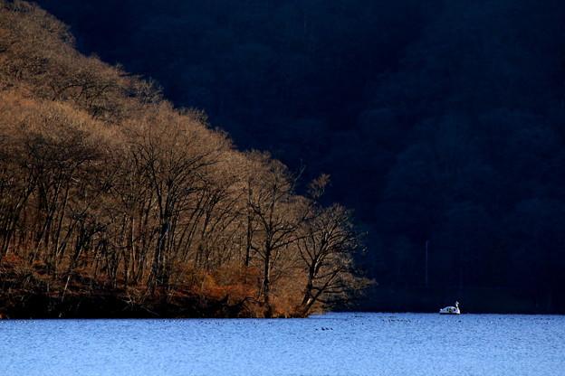 Photos: 湖畔晩秋