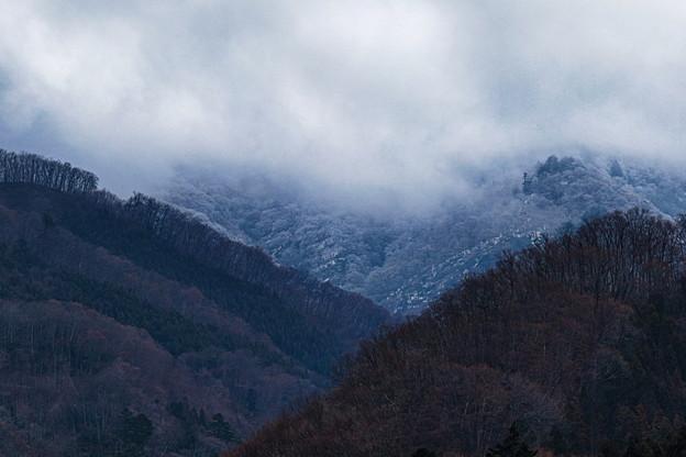 奥山の景色