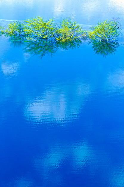 Photos: 湖上春景