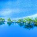 Photos: 涼しき湖上