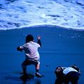 Photos: 波と遊ぶ