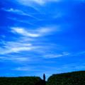 Photos: 5月の空