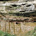写真: 壁から滴る泉