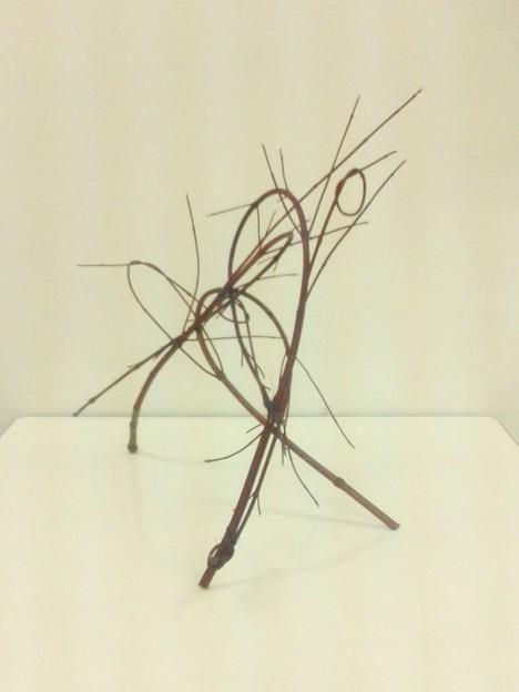 枝の構成…