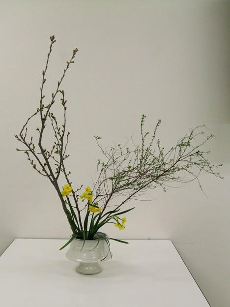春の枝モノ2種