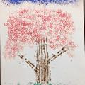 Photos: スタンピング・桜の木