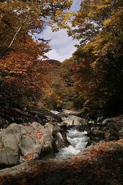 中津川渓谷 B