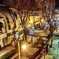 写真: 夜のパセオ通り