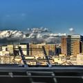 写真: 東北新幹線から見る大宮