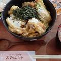 写真: 豆腐カツ丼
