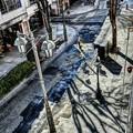 写真: 雪の残る街