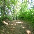 湖畔の坂道
