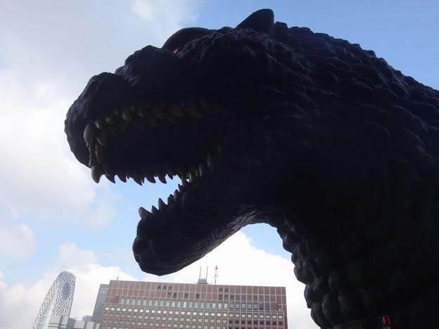 新宿のゴジラ