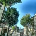 写真: 夏のパセオ通り