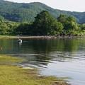 Photos: 減水した桧原湖
