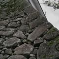 写真: 鶴ヶ城の石垣