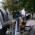 パセオ通りイルミネーション設置工事