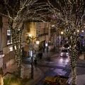 冬至の夜 パセオ通り