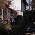 Photos: 立春の残雪