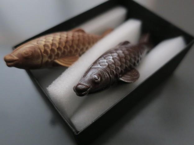 Photos: 鯉するチョコレート