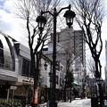 Photos: パセオ通り