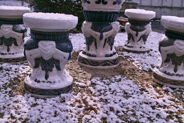 Photos: 春の雪はすぐ溶ける
