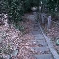 Photos: 古い石段