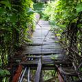 写真: 危ない橋