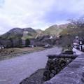 Photos: 津和野川