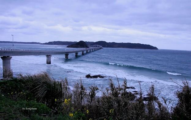 写真: 角島大橋