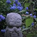 Photos: あじさい地蔵