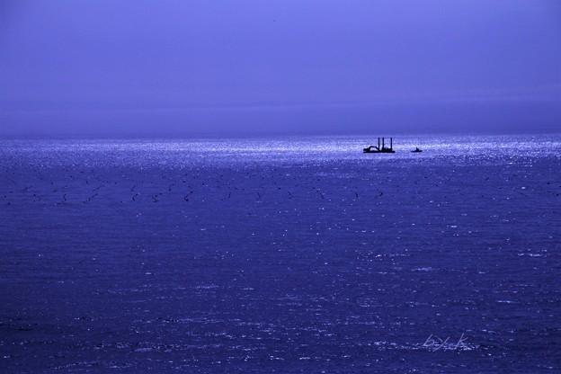写真: 東北の海