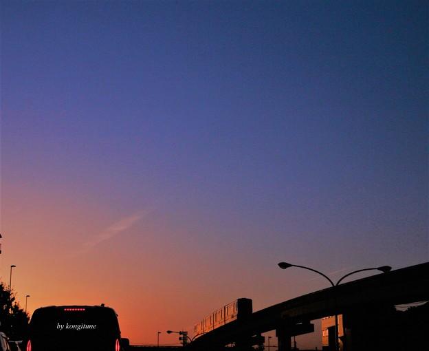 写真: 黄昏れモノレール