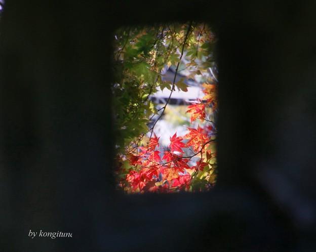写真: 灯籠の秋